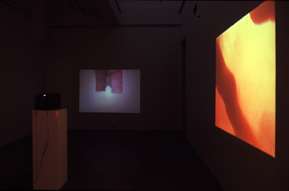 'Projections for Eliza 3 & 2', 1999. Installation view.
