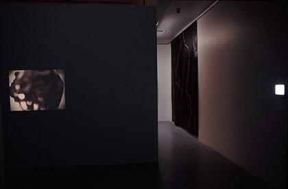 'Projections for Eliza 5 & 1', 1999. Installation view, images on light box.