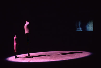 'Second Stage', 1995. Installation view.