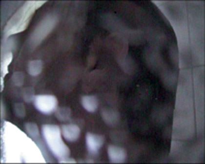 'Projections for Eliza 1', 1999. Video still.
