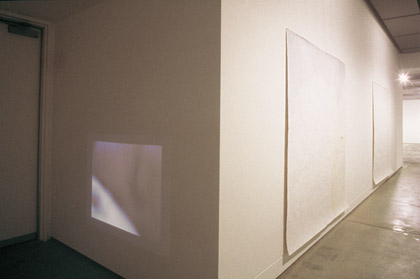 'Blind of Sight II' and 'Blind of Sight III', 2002.  Installation view, Institute of Modern Art. Photograph: Richard Stringer